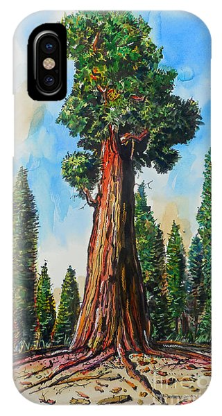 Huge Redwood Tree IPhone Case