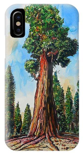 Huge Redwood Tree IPhone Case