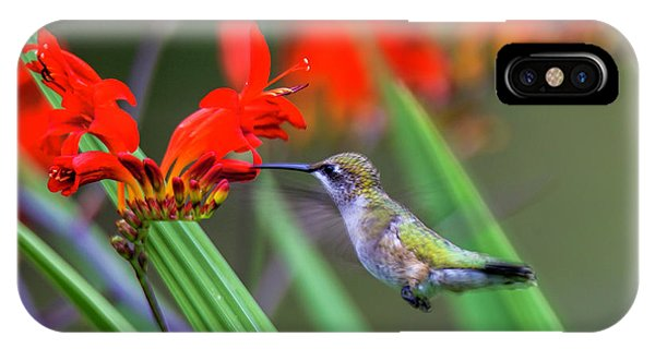 Hummer Lunch IPhone Case