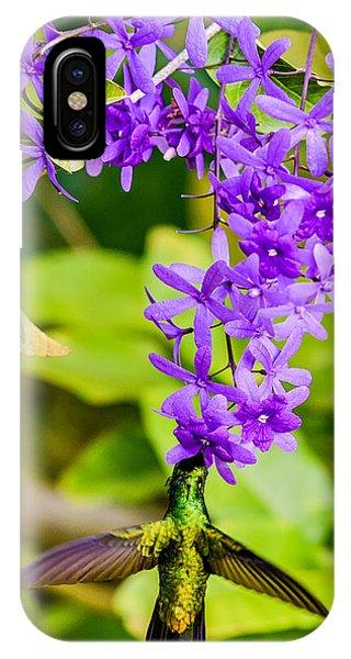Humming Bird Flowers IPhone Case