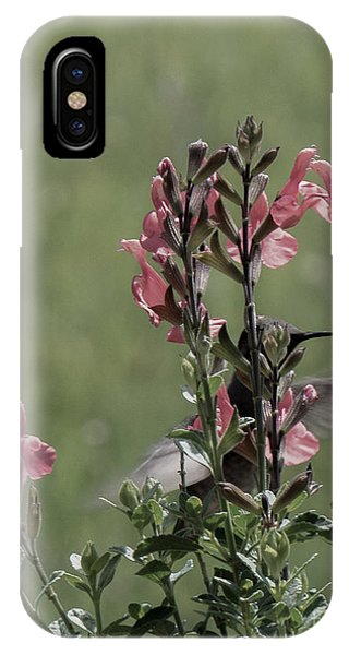 Hummingbird 1 IPhone Case
