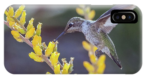 IPhone Case featuring the photograph Hummingbird 6750-041818-1cr by Tam Ryan