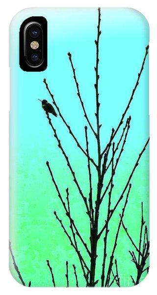 Hummingbird After Rain IPhone Case