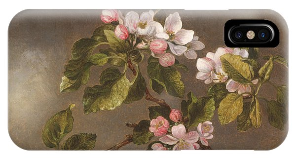 Humming Bird iPhone Case - Hummingbird And Apple Blossoms by Martin Johnson Heade