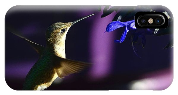 Hummingbird And Blue Flower IPhone Case