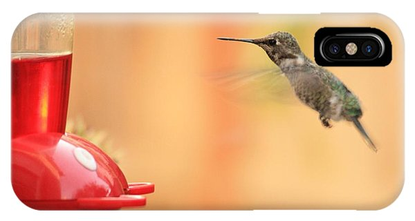 Hummingbird And Feeder IPhone Case