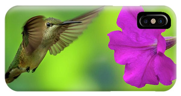 IPhone Case featuring the photograph Hummingbird And Flower by Allin Sorenson