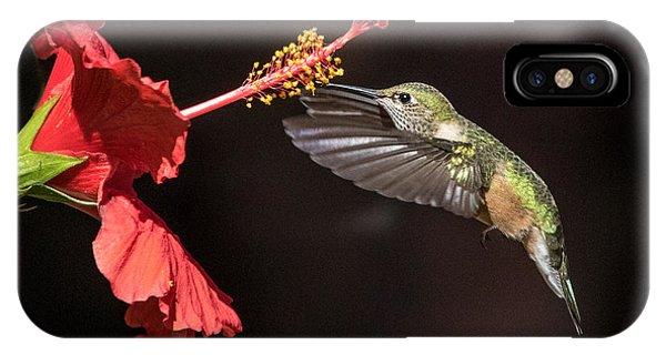 Hummingbird And Hibiiscus IPhone Case