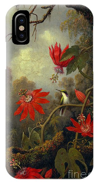 Hummingbird And Passionflowers 1877 IPhone Case