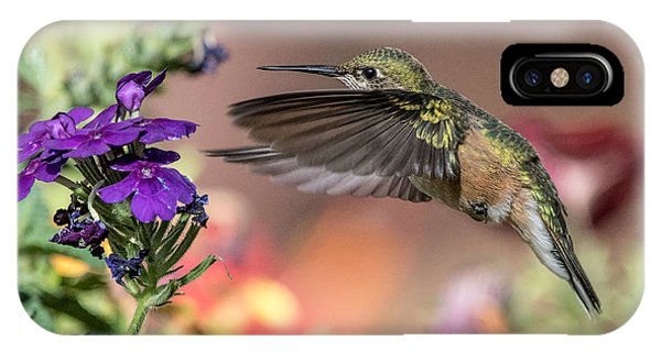 Hummingbird And Purple Flower IPhone Case