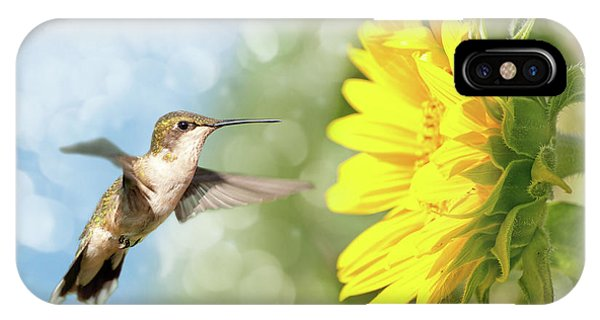Hummingbird And Sunflower IPhone Case