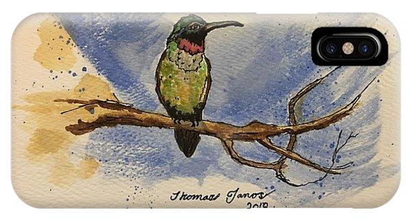 Hummingbird At Rest IPhone Case