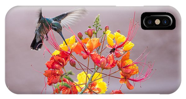 Hummingbird At Work IPhone Case