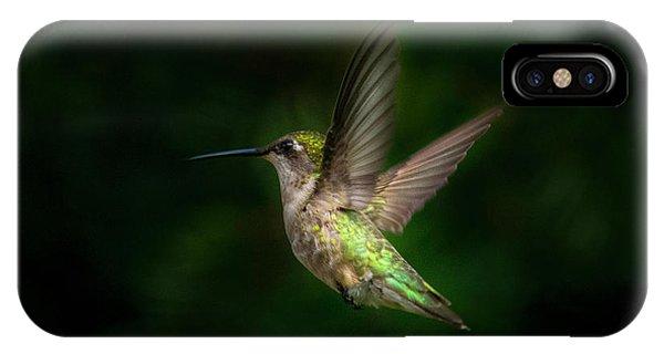 Hummingbird B IPhone Case