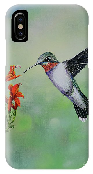Hummingbird Beauty IPhone Case