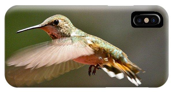 Hummingbird Facing Left IPhone Case