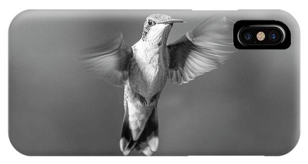 Beautiful Hummingbird iPhone Case - Hummingbird Flight by Betsy Knapp