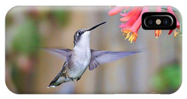 Hummingbird Happiness 2 IPhone Case
