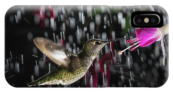 Hummingbird Hovering In Rain With Splash IPhone Case