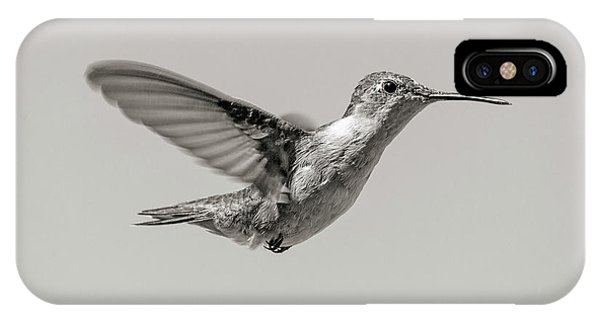 Beautiful Hummingbird iPhone Case - Hummingbird In Black And White by Betsy Knapp