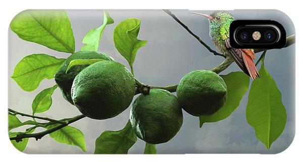 Hummingbird In Lime Tree IPhone Case