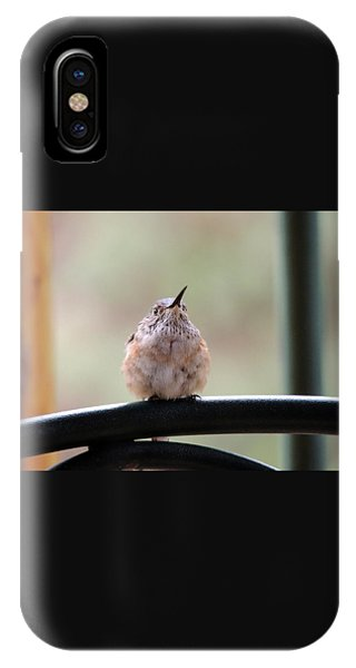 Baby Hummingbird IPhone Case