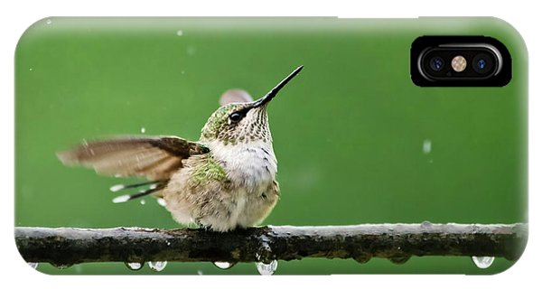 Hummingbird In The Rain IPhone Case