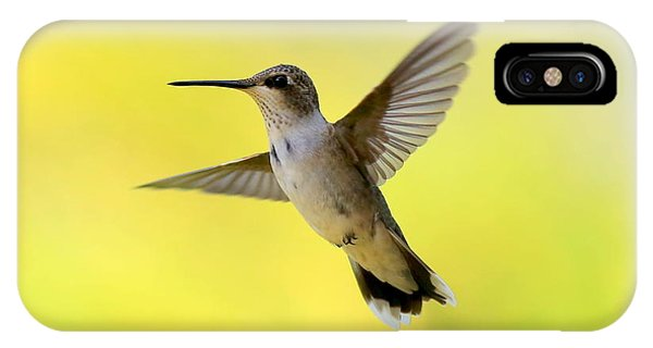 Hummingbird In Yellow IPhone Case