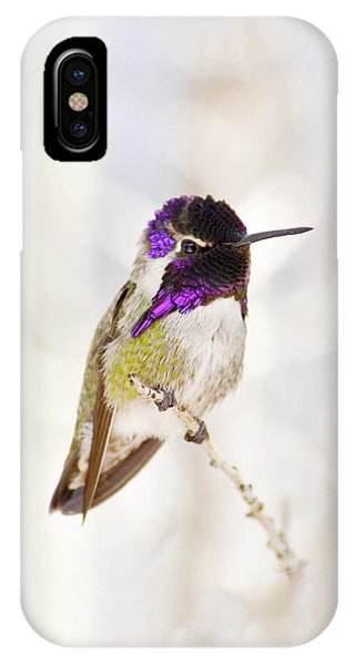 Hummingbird Larger Background IPhone Case