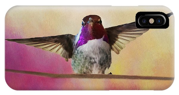 Hummingbird On A Wire IPhone Case