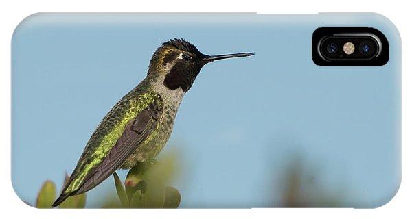 Hummingbird On Watch IPhone Case