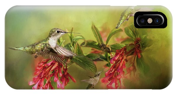 Hummingbird Paradise IPhone Case