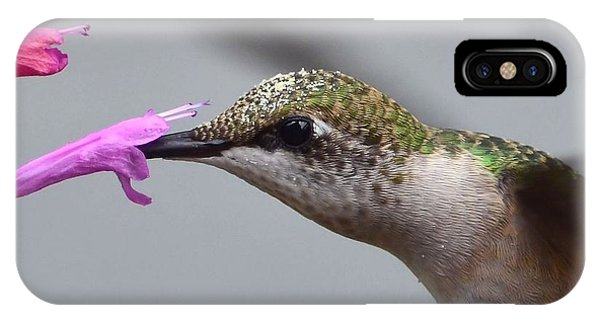 Hummingbird Profile IPhone Case