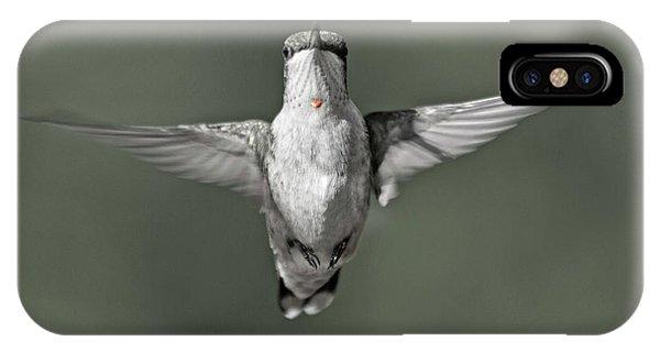 Beautiful Hummingbird iPhone Case - Hummingbird Red Heart by Betsy Knapp