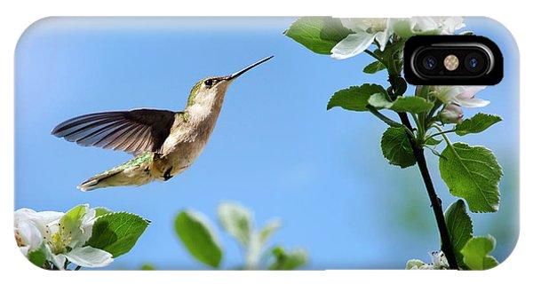 Hummingbird Springtime IPhone Case