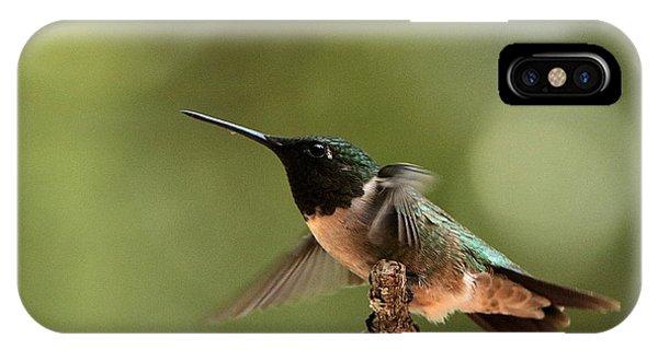 Hummingbird Take-off IPhone Case