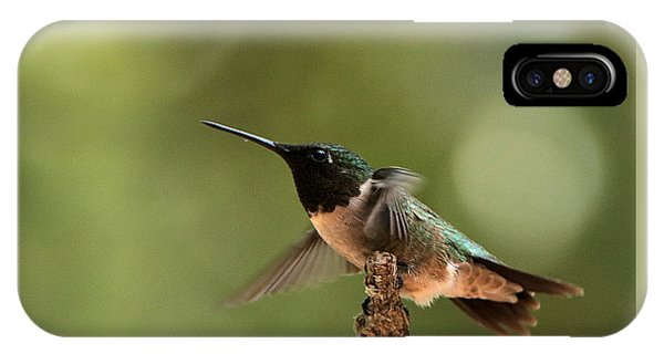 Hummingbird Take-off IPhone Case