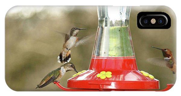 Hummingbird Trio IPhone Case