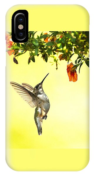 Hummingbird Under The Floral Canopy IPhone Case
