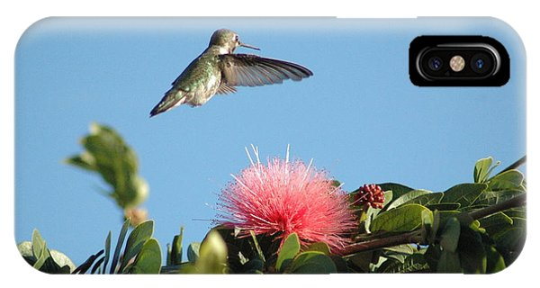Hummingbird With Pink Flower IPhone Case
