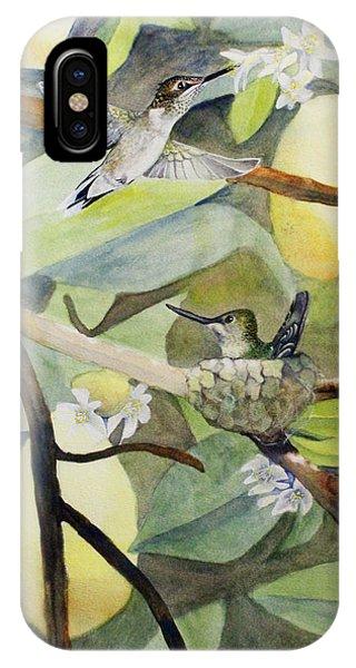 Hummingbirds And Lemons IPhone Case