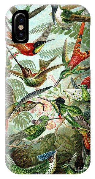 Humming Bird iPhone Case - Hummingbirds by Ernst Haeckel