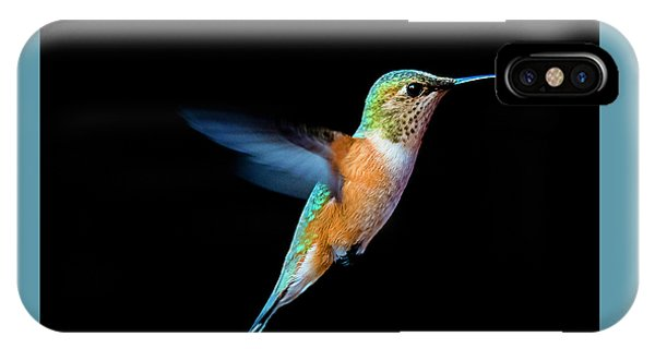 Hummming Bird IPhone Case