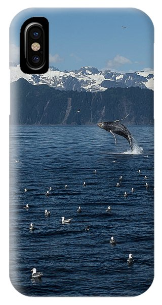 Humpback Whale Breach 3.1. Mp IPhone Case