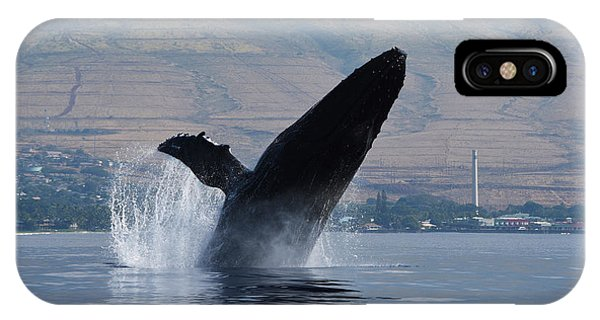 Humpback Whale Breach IPhone Case