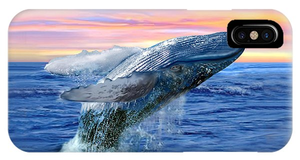 Humpback Whale Breaching At Sunset IPhone Case