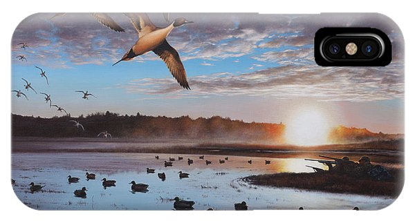 Humphrey Farm Pintails IPhone Case