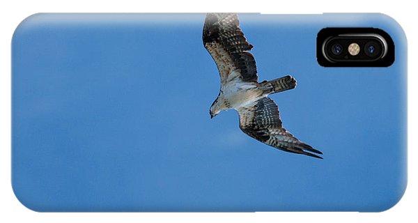 Hunting Osprey IPhone Case
