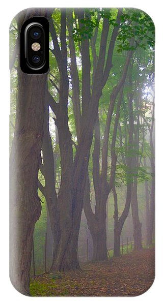 Huntington Mist  IPhone Case