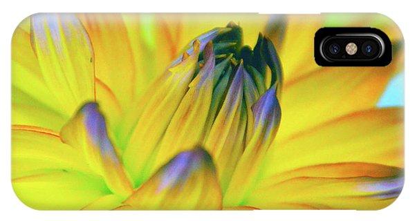 Husky Colors IPhone Case